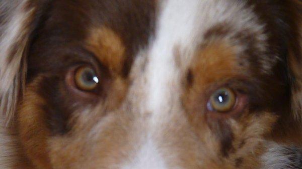 Lasuite des photos avec sa soeur du 18.07.2011