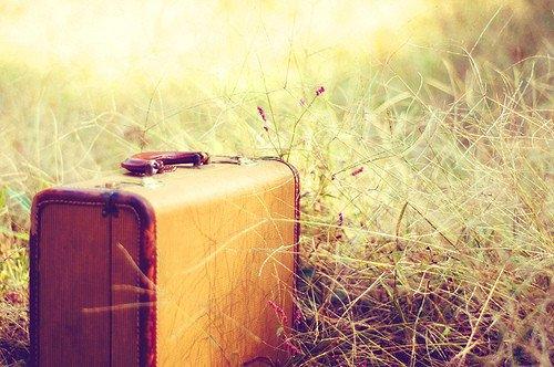 La vie est une route pour voyageurs (Ibn Qayyim)