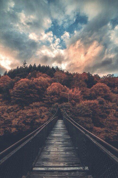 « Suis la voie de la guidée, et ne sois pas leurré par le petit nombre de ceux qui empruntent cette voie ! Prends garde aux voies de l'égarement, et ne sois pas séduit par le grand nombre de damnés ! » Al-Foudayl Ibn Iyyâd rahimaho Allah