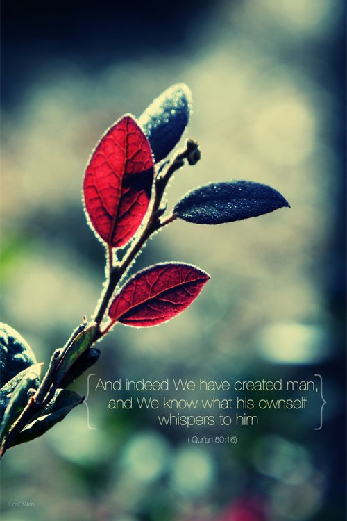 Souleyman Ad-Darani rahimaho Allah a dit : « Le bonheur sera accordé à un homme qui n'effectue un pas sans qu'il ne soit dans le but de la satisfaction d'Allah le Très Haut ».