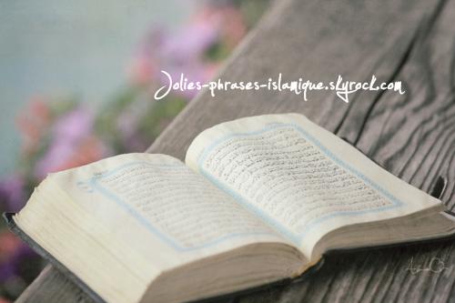 """Qu'ALlâh fasse miséricorde à Shaykh al Islâm ibnu Taymiyyâh qui a dit :"""" Celui dont ALlâh illumine le coeur de lumière, Il le guide vers ce qui lui permettra de L'atteindre. Mais celui qu'Il aveugle, l'abondance de ses livres ne fait qu'augmenter sa perplexité et son égarement."""""""
