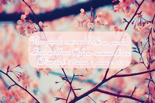 """""""Une parole convenable et un pardon sont meilleurs qu'une aumône suivie d'un tort. Allah se suffit à Lui-même et Il est plein de mansuétude"""" [ Sourate 2 verset : 263 ]"""