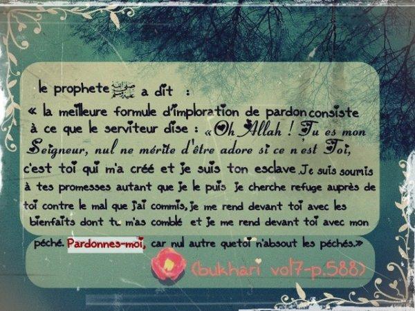 """ABÛ AL-MANHÂL a dit : """" Le serviteur n'a pas meilleur voisin dans sa tombe qu'une demande de pardon abondante. """" [Az-Zuhd li Ahmad (396)]"""