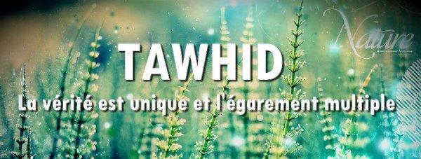 ~ :: Au-delà des beaux discours, le meilleur rappel est l'appel au Tawhid. Mais malheureusement, les gens aiment les beaux discours :: ~ Abou hind