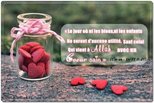 Allah sobhanou wa ta3ala a dit : « Le jour où ni les biens, ni les enfants ne seront d'aucune utilité, sauf celui qui vient à Allah avec un c½ur sain » (Coran : 26/88 & 89).