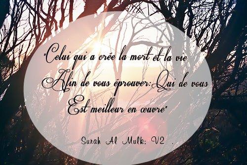 """""""Celui qui a crée la mort et la vie afin de vous éprouver: qui de vous est meilleur en ½uvre""""{Surah Al Mulk; V2}."""