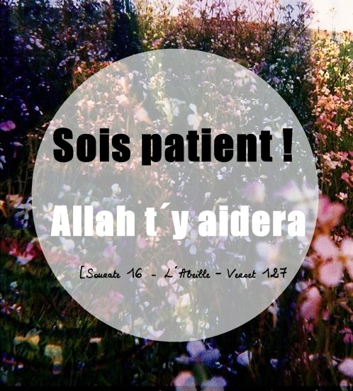 {Sois patient ! Allah t´y aidera} [Sourate 16 - L´Abeille – Verset 127]