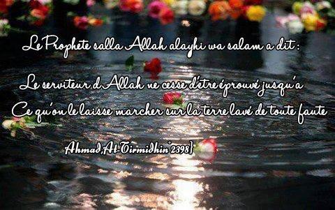 """Al-Hassan al-Basri ( Rahimou Allah ) a dit : « Ne désapprouvez pas les épreuves et les coups durs ; il se peut que ce que l'on désapprouve aboutit à notre salut et que ce que l'on préfère conduise à notre trépas."""""""