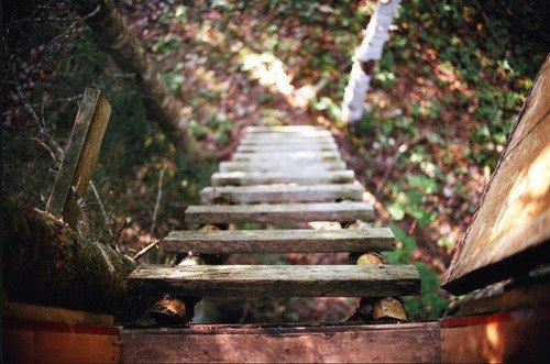 La chute n'est pas un échec. L'échec c'est de rester là où on est tombé.