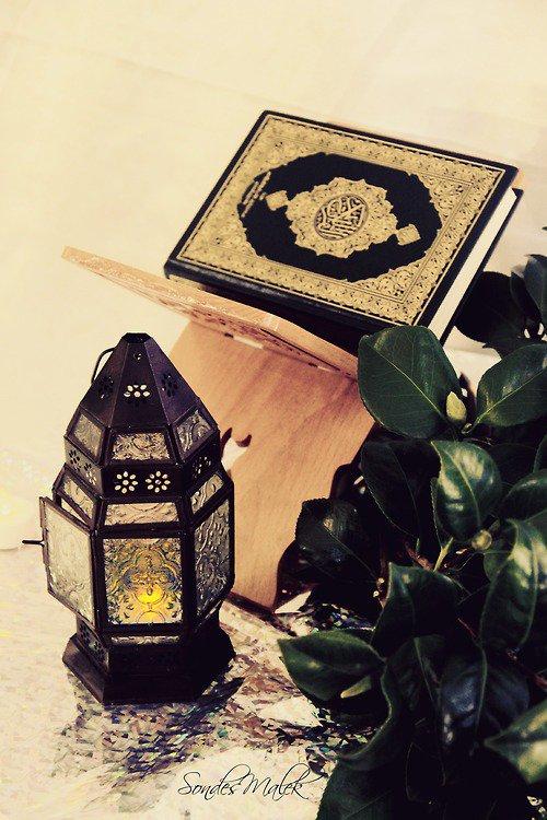 """Abou Djouhayfa rahimaho Allah  a dit : """" Tiens compagnie aux grands, lie-toi d'amitié aux savants et frequante les sages"""" (rapporté par abdelbar)  source: Djami3 bayane al 3ilm wa fadlihi 126/1"""
