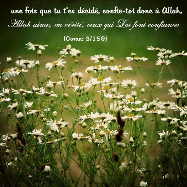 une fois que tu t'es décidé, confie-toi donc à Allah, Allah aime, en vérité, ceux qui Lui font confiance.» (Coran: 3/159)