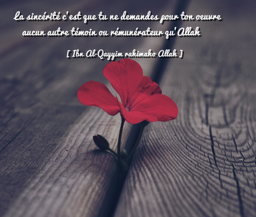"""الإخلاص La Sincérité : La sincérité c'est que tu ne demandes pour ton oeuvre aucun autre témoin ou rémunérateur qu'Allah.""""[Les Sentiers Des Itinérants , d'Ibn Al-Qayyim ]"""