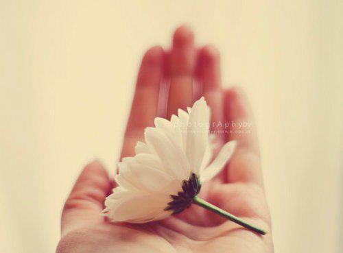 D'après Abdallah Ibn 'Amr (qu'Allah l es agrée), le Prophète (que la prière d'Allah et son salut soient sur lui) a dit: « Ô vous les gens! Lorsque vous demandez à Allah, demandez lui en étant certains de l'exaucement car certes Allah n'exauce pas à un serviteur qui l'a invoqué avec un coeur inattentif » (Rapporté par Ahmed et authentifié par Cheikh Albani dans Sahih Targhib n°1652)