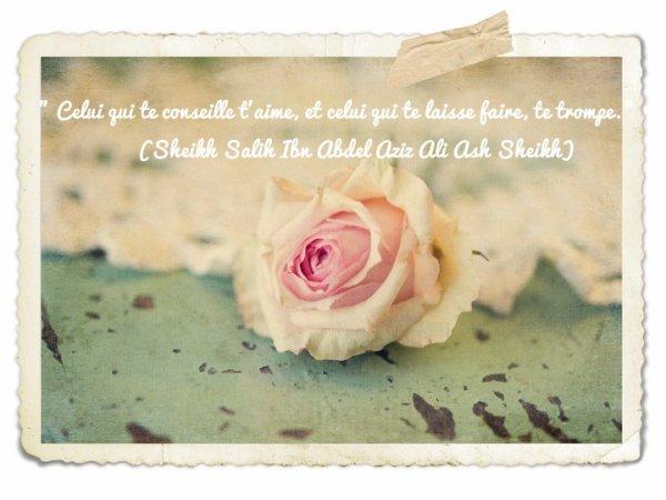 Ibn Hibban a dit:le conseil est uniquement donnée à celui qui l'accepte,Il est préférable de conseiller le sourd que celui qui lui tourne le dos. La majorité de ceux qui n'acceptent pas les conseils agissent comme ça parce qu'ils se tournent que vers eux-mêmes. Rawdhah
