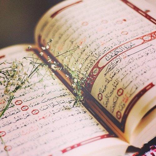"""Abu Oubayd dit:""""le serviteur ne questionne soi-même que par le coran, s'il aime le coran,alors il aime Allah et son messager""""(Mosanaf-1/485)"""