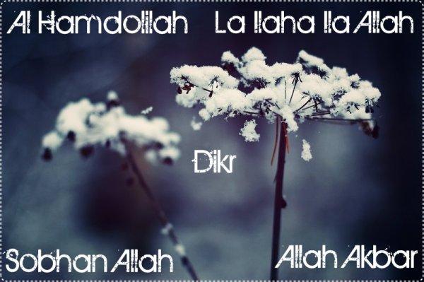 Un de nos pieux prédécesseurs, qu'Allah lui fasse miséricorde,  a dit : «  On présentera au fils d'Adam les heures de sa vie et il regrettera amèrement chaque heure où il n'a pas évoqué Allah, Exalté soit-Il».