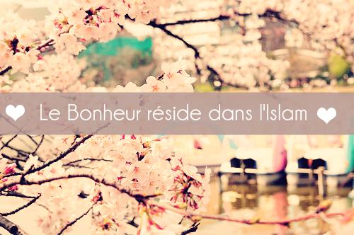 Le Bonheur réside dans l'Islam