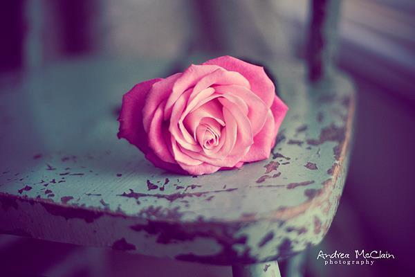 """Al Hasan a dit : """"Prenez garde à la médisance. Par celui qui détient mon âme dans Sa main, elle dévore plus vite les bonnes actions que le feu ne dévore le bois."""" {Al Ghîbah wa-n-Namîmah ~ 163} ::"""