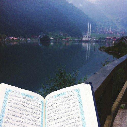Parole de l'Imâm Ibn Al Qayyim Al Jawziyya rahimaho Allah