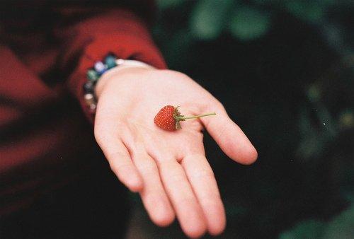 """Ibn Wahb  rahimaho Allah a dit :  J'ai fait le voeu pieux, chaque fois que je médisais quelqu'un de jeûner un jour, et cela m'a épuisé : je médisais et jeûnais. Puis j'ai eu l'intention, chaque fois que je médisais quelqu'un, de donner un dirham en aumône, et par l'amour du dirham, j'ai délaissé la médisance.""""  [As-Siyar (9/228)]"""