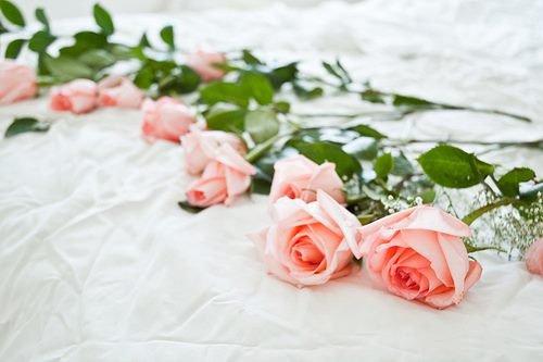 La recherche de la perfection Cheikh Muhammad Ibn Ibrahîm al Hamad (حفظه الله تعالى
