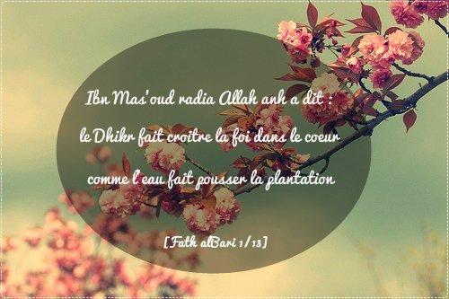 """Ibn Mas'oud رضي الله عنه :""""le Dhikr fait croitre la foi dans le coeur comme l'eau fait pousser la plantation""""[Fath alBari 1/13]"""