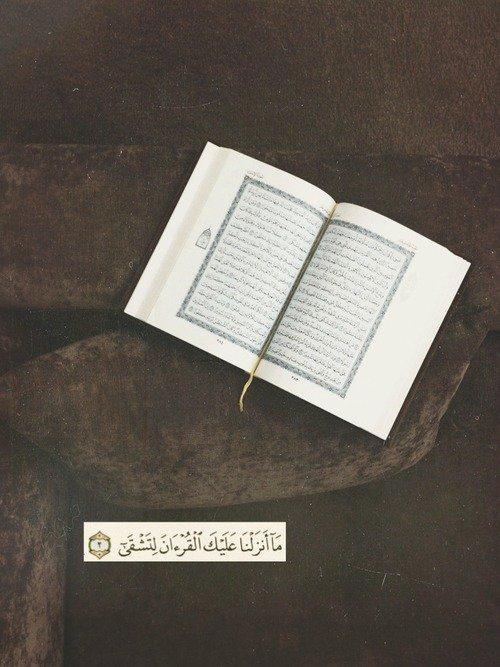 Cheikh Al Fawzen (hafidaho Allah) à dit : Si tu es armé du Coran et de la sounnah, rien ne pourra jamais te vaincre. Mais si tu n'as pas de science avec toi, tu partira avec la 1ère ambiguïté [Charh an-Nouniya 1/176]