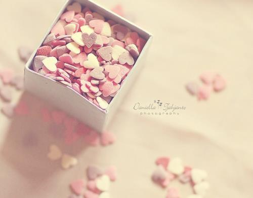 Abou ad-Darda (radhia Allah 'anhou) à dit : Sachez que la bonté ne fatigue pas, et que la faute ne s'oublie pas. [Imam Ahmed dans az-Zouhd p111]