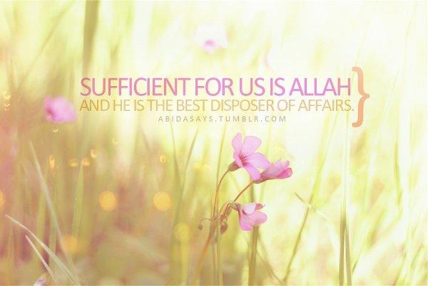 L'imam Ibn al Qayyim Rahimaho Allah a dit: L'amour bénéfique est de 3 categories: - L'amour d'Allah - L'amour en Allah  Et l'amour qui aide a l'obéissance d'Allah et à s'écarter de Sa désobéissance [Ighâthatou al Lahfân 2/358]