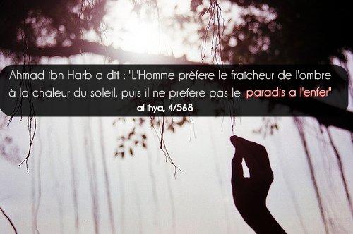 """Ahmad ibn Harb a dit : """"L'Homme prèfere le fraicheur de l'ombre à la chaleur du soleil, puis il ne prefere pas le paradis a l'enfer""""  source: al ihya, 4/568"""