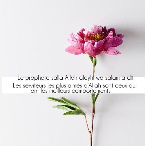 le prophète salla Allah alayhi wa salam  a dit: « Les serviteurs les plus aimés d'Allah sont ceux qui ont les meilleurs comportements »