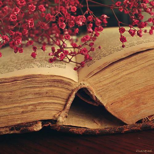 """Ibn Kathir  rahimaho Allah a dit:  """"Al-Boukhâri se réveillait la nuit, allumait sa lanterne, puis écrivait une chose bénéfique qui lui traversait l'esprit. il soufflait ensuite sur la lanterne, et puis se réveiller encore et encore, jusqu'à ce que le nombre de fois qu'il faisait cela se comptait à près de vingt fois. [Ibn Kathîr, al-Bidâyâh (11/3)]"""