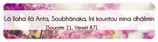 D'après Abou Houreira (qu'Allah l'agrée), le Prophète (que la prière d'Allah et son salut soient sur lui) a dit: «Celui qui aime que Allah l'exauce dans les moments difficiles et de soucis, qu'il multiplie les invocations dans les moments de facilité». (Rapporté par Tirmidhi et authentifié par Cheikh Albani dans Sahih Al Jami n°6290)