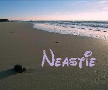Neastie