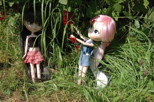 sortie au jardin par une belle journée ensoleillée ^^