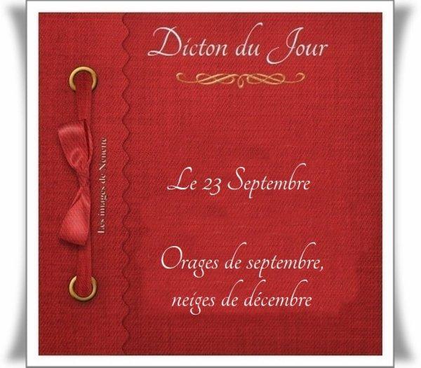Dicton