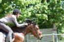 Photo de Story-of-a-pony