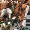 xPony-Dream