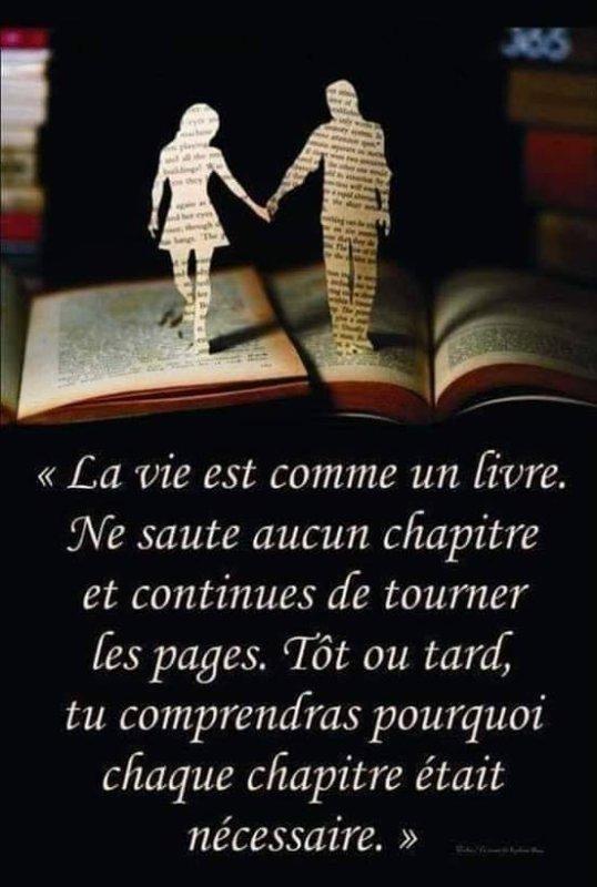 La vie est comme une livre