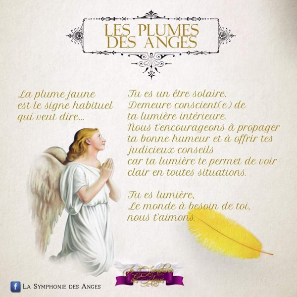 Les plumes des anges