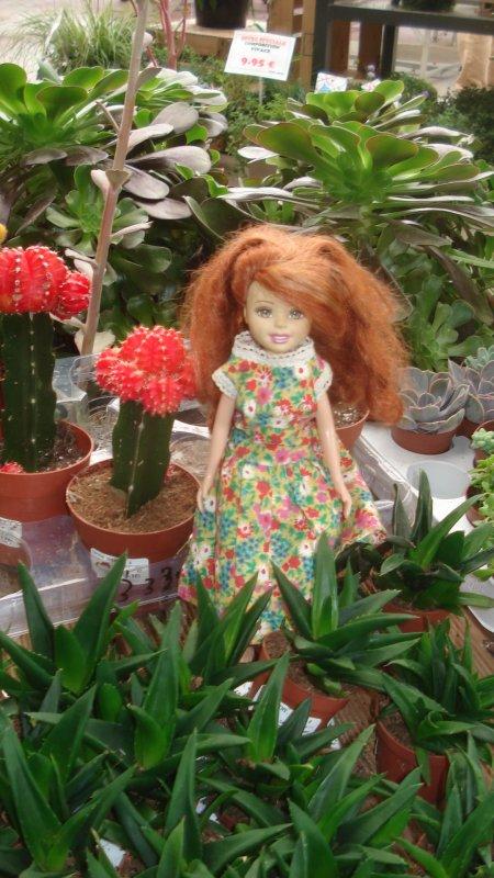 Elle aime le cactus fleuri mais il faut partir