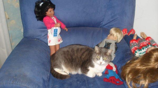 bon jeudi  à toutes et tous, avec ma Minette qui aime aussi les poupées