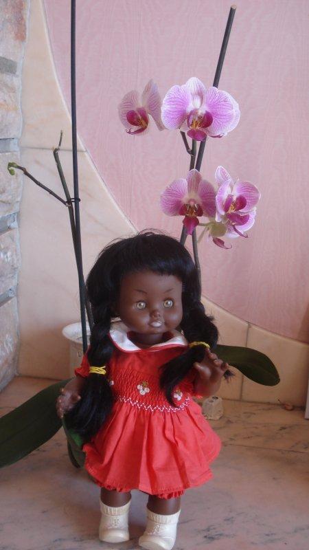 Marie-Eve et l'orchidée