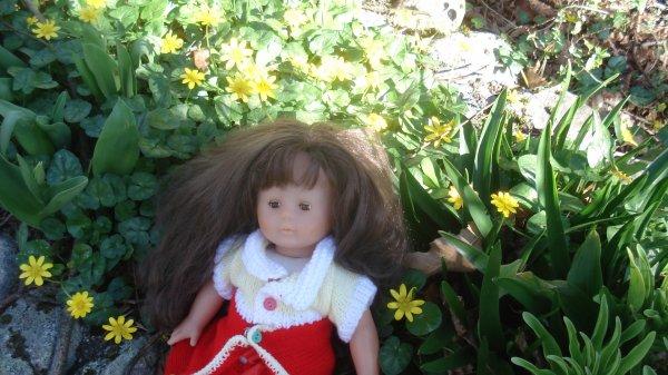 Corolle et les fleurs du jardin