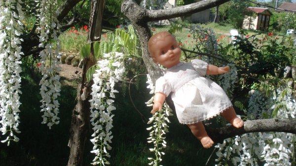 Ma petite sur la glycine du jardin