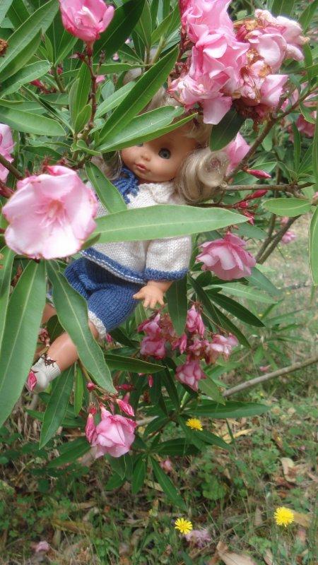 Pour finir par se cacher dans le laurier rose