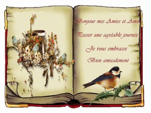 un livre et un petit oiseau