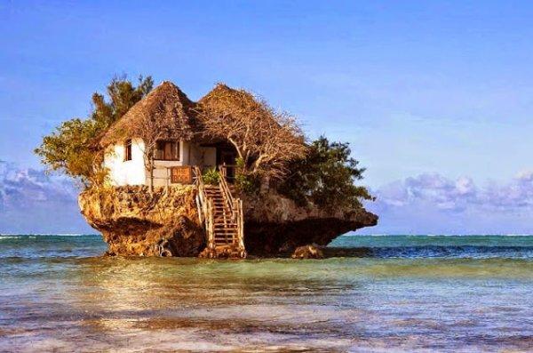 une maison en forme de nid