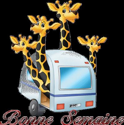 les girafes dit ....