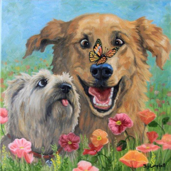 des chiens de printemps